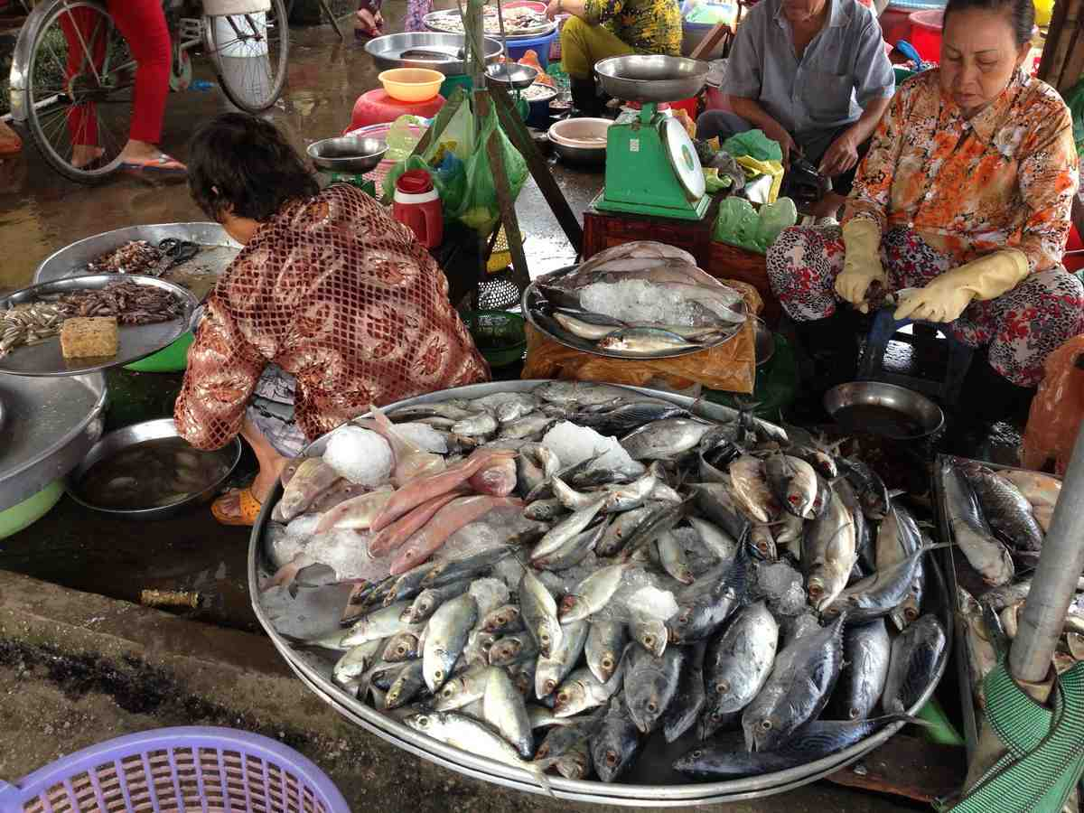 Mekong Delta experience 3 days, Ho Chi Minh - My Tho - Chau Doc - Tra Su - Can Tho
