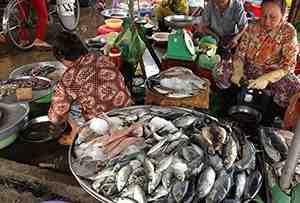 Mekong Delta experience 3 days, Ho Chi Minh - Chau Doc