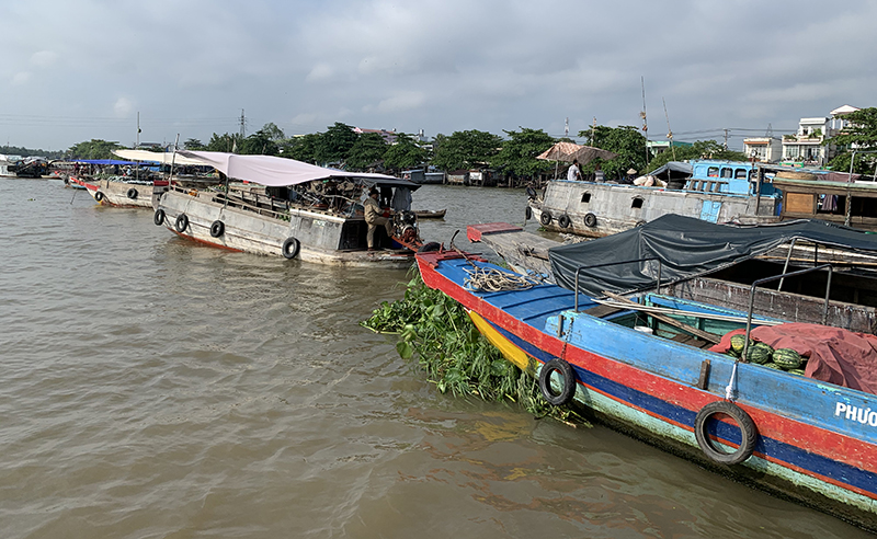 The Mekong Delta vibrates with colour